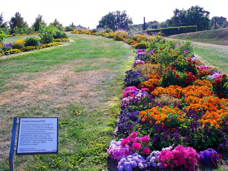 Blumen Wasserfall -- Elbauenpark - Der Farben Blumen Wasserfall im Elbauenpark in Magdeburg