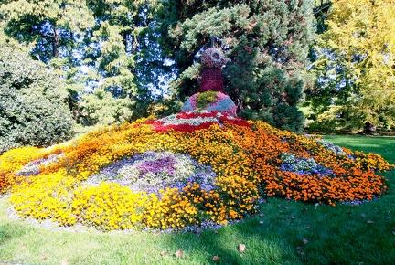 Blumenpfau -- Insel Mainau - Blumenpfau auf Insel Mainau