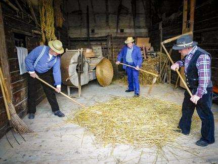 Bauern beim Stroh dreschen -- Neuhausen ob Eck - Bauern beim Stroh dreschen auf dem Kirbe Fest in Neuhausen ob Eck