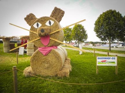 Katze -- Der jährliche Strohpark mit Skulpturen aus Stroh in Schwenningen Heuberg.