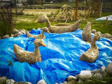 Enten Familie -- Der jährliche Strohpark mit Skulpturen aus Stroh in Schwenningen Heuberg.