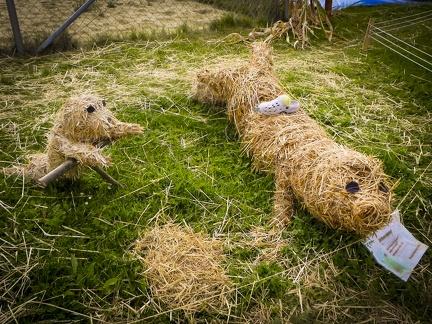 Robben -- Der jährliche Strohpark mit Skulpturen aus Stroh in Schwenningen Heuberg.